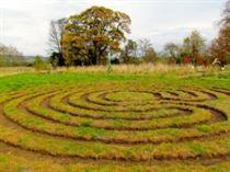 DPG labyrinth